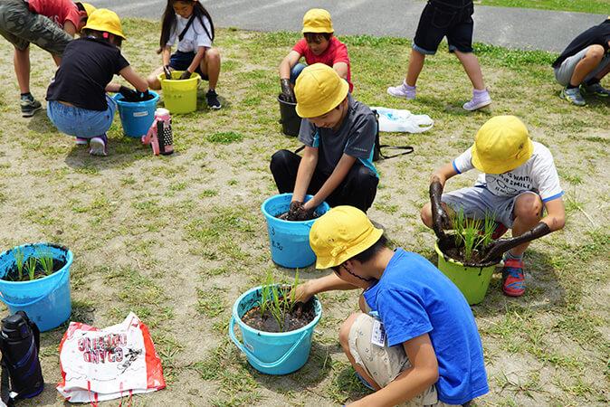 パルシステム東京の「お米の出前授業」