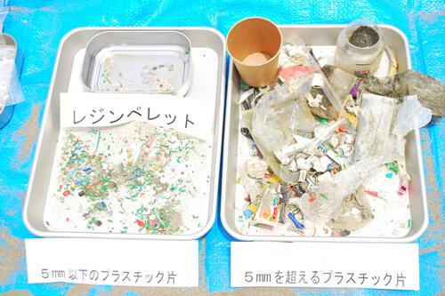 お台場の砂浜でマイクロプラスチック採取体験!