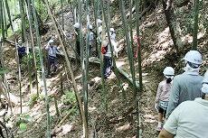 斜面に作られた竹道も見学しました。