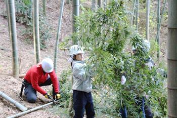 CO-OP共済連 健康づくり支援企画 竹の伐採と道づくり in いなぎめぐみの里山