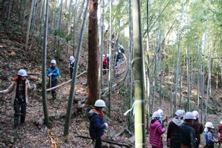 竹の伐採を伴う健康づくり企画は、春の大人気企画「タケノコ掘り」で活用している竹林フィールドで行います。