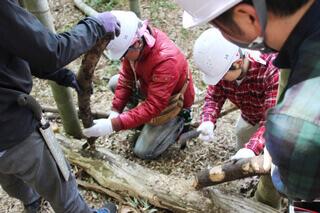 里山の道づくりでは里山にある資源をフル活用します。敷き竹を固定するのに欠かせない杭も、鉈(ナタ)を使って手作り。