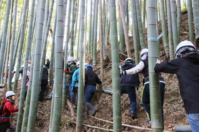 尾根まであと少し!いなぎめぐみの里山で竹の伐採と道づくりが進んでいます。