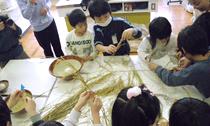 「脱穀・籾すり実習」プログラム内容