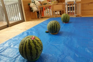 ▲産直産地「飯塚農場(新潟県)」のすいか。 今年も大きくて立派で美味しそう!! 産地の方のご厚意に感謝です。