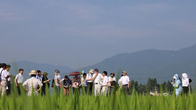 水が育む「産直米」と「電気」 ~JA山形おきたまパルシステム米生産部会公開確認会~
