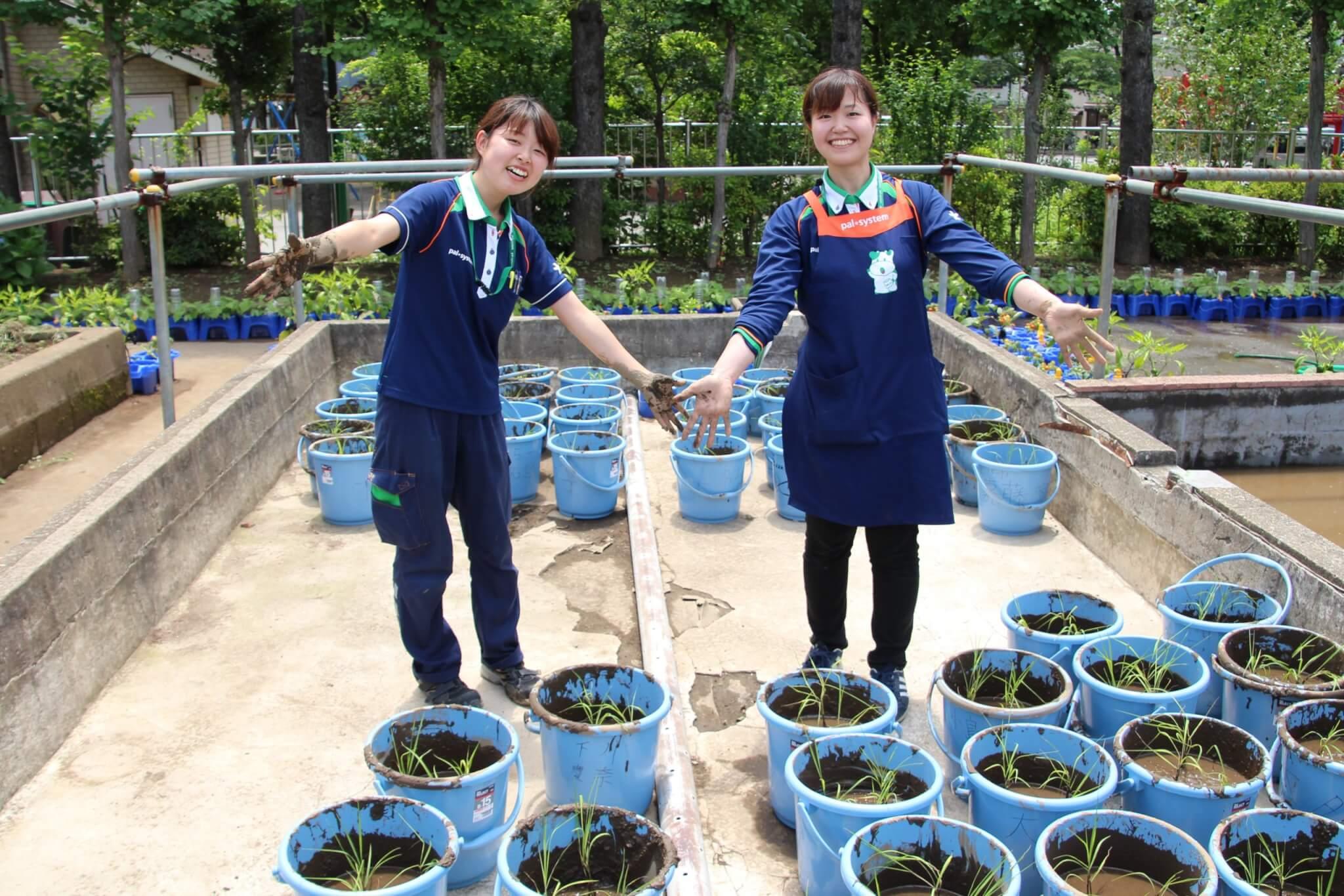 2018年度(平成30年度) パルシステム東京教育支援活動「お米の出前授業」実施校