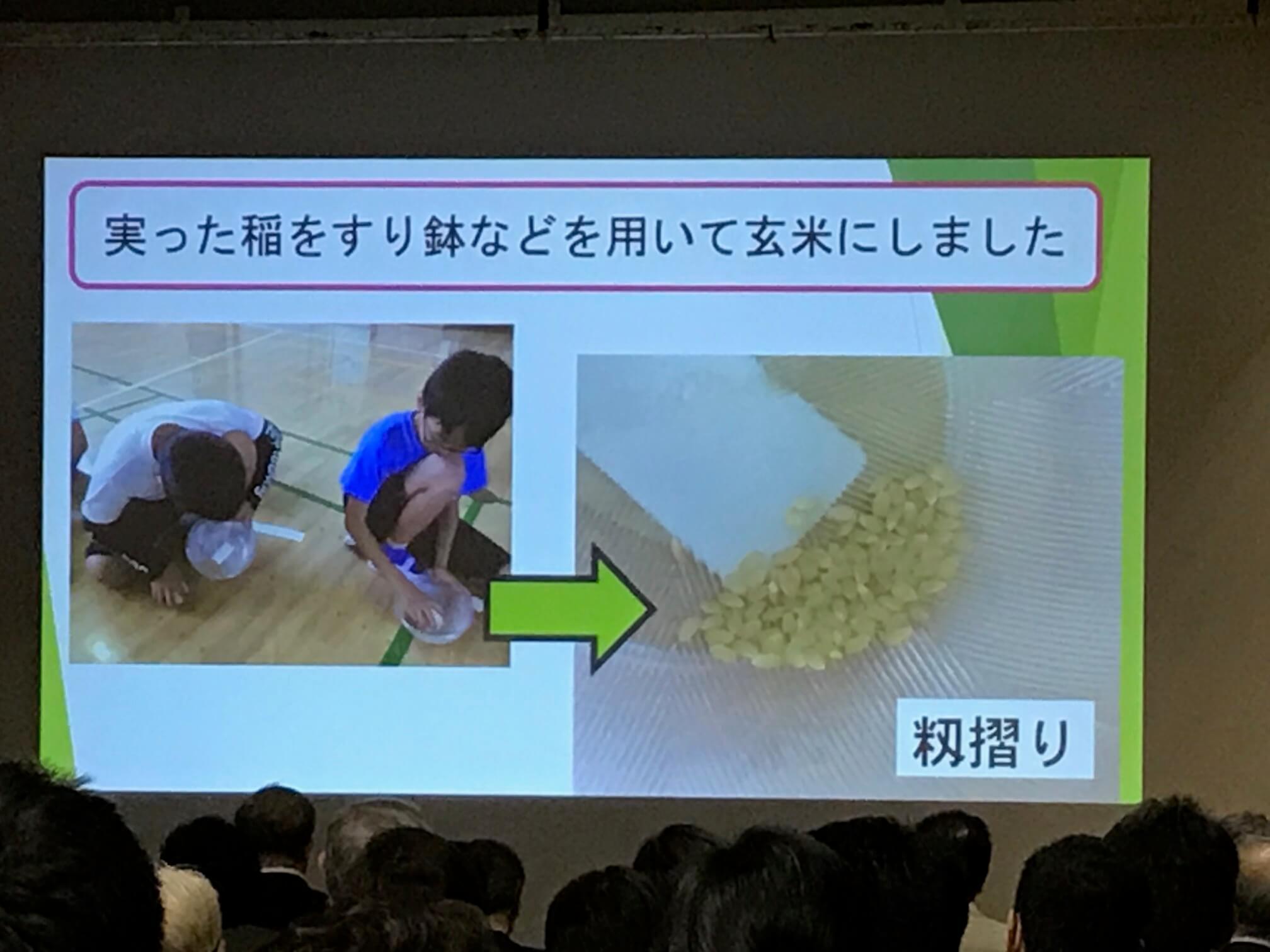 さらに…籾摺りに挑戦