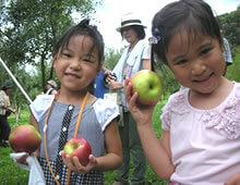 りんご収穫体験
