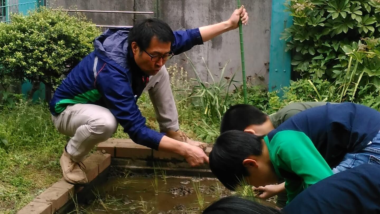 2019年度(平成31年度・令和元年度) パルシステム東京教育支援活動「お米の出前授業」実施校