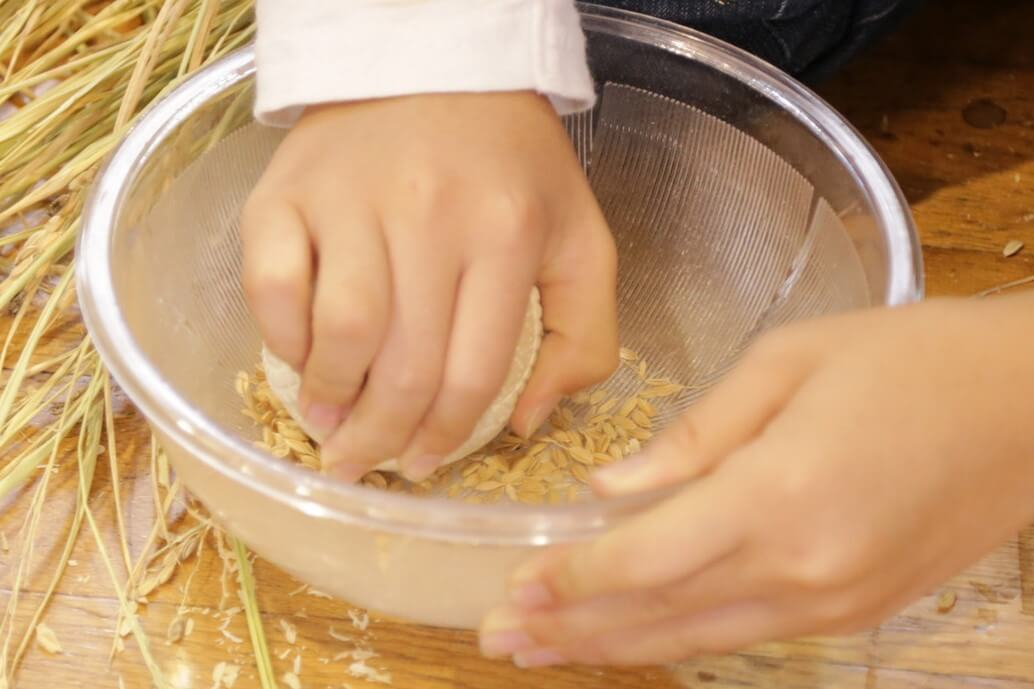 ★ボールとすり鉢を使って籾摺り(もみすり)をしましょう★