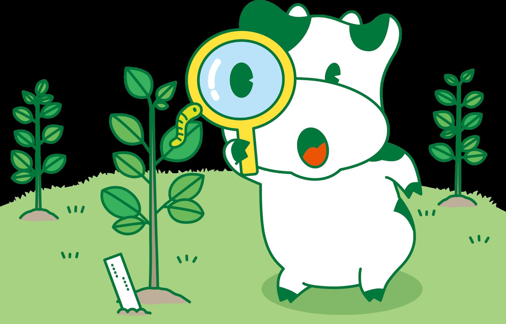 自分たちだけの小さな田んぼで稲を育てよう!バケツ稲(ミニ田んぼ稲)に挑戦!