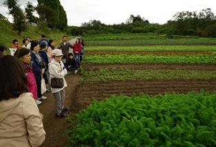 太陽熱による殺菌・殺虫や、混植による病気対策など、農薬に頼らない栽培の工夫を説明する大内督さん