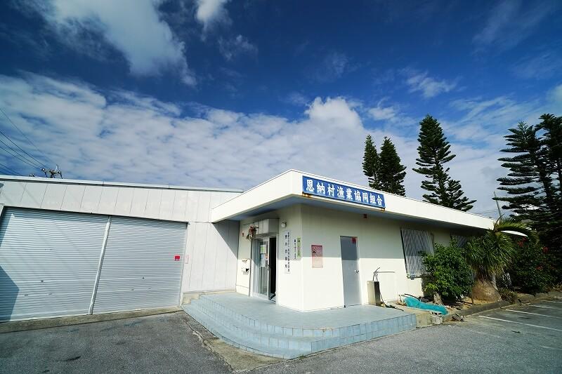 沖縄の青い空のなか恩納村漁協事務所へ