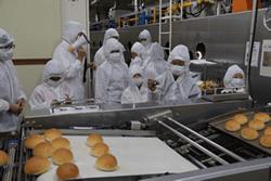 見学の様子、パンの行程に興味津々
