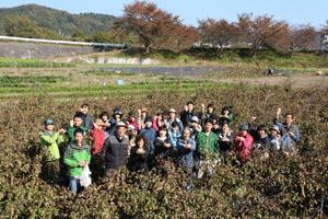 2013年度福島スタディツアー【第2回11月編】
