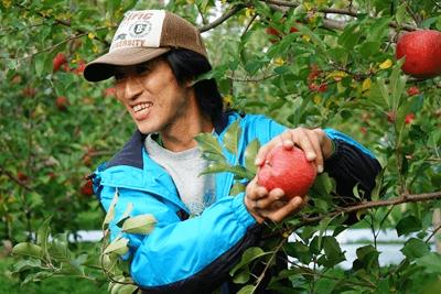 リンゴ園でのパルシステム福島と東京の交流