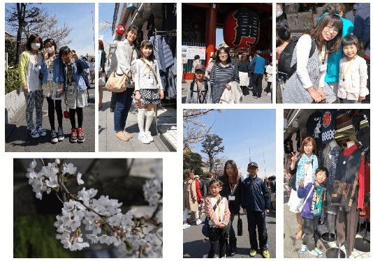 浅草見物、桜もキレイに咲いてました