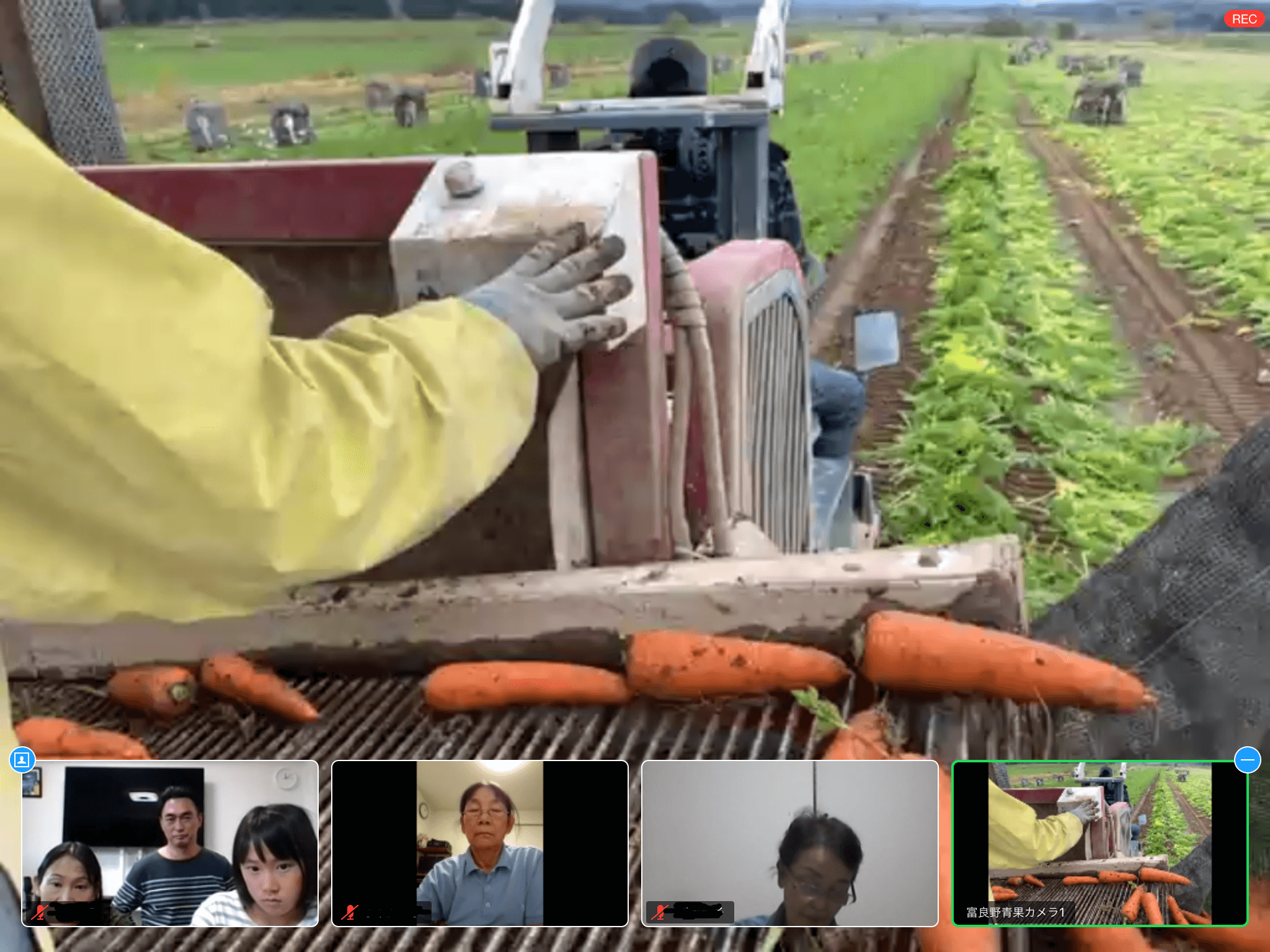 ニンジンの収穫機を運転中の生産者さんにインタビュー!