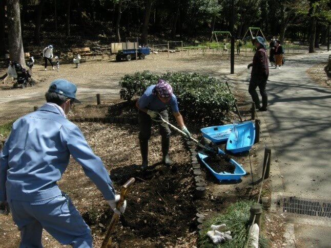 井の頭恩賜公園 池のために、ひと肌脱いで!ひと仕事!