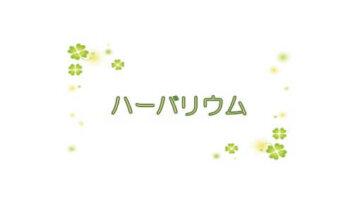 【 D-6 】 ハーバリウム