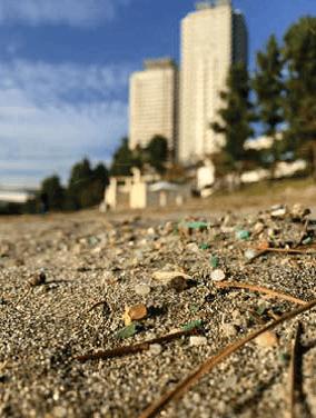 環境を考えよう DVD「プラスチックごみ~日本のリサイクル幻想~