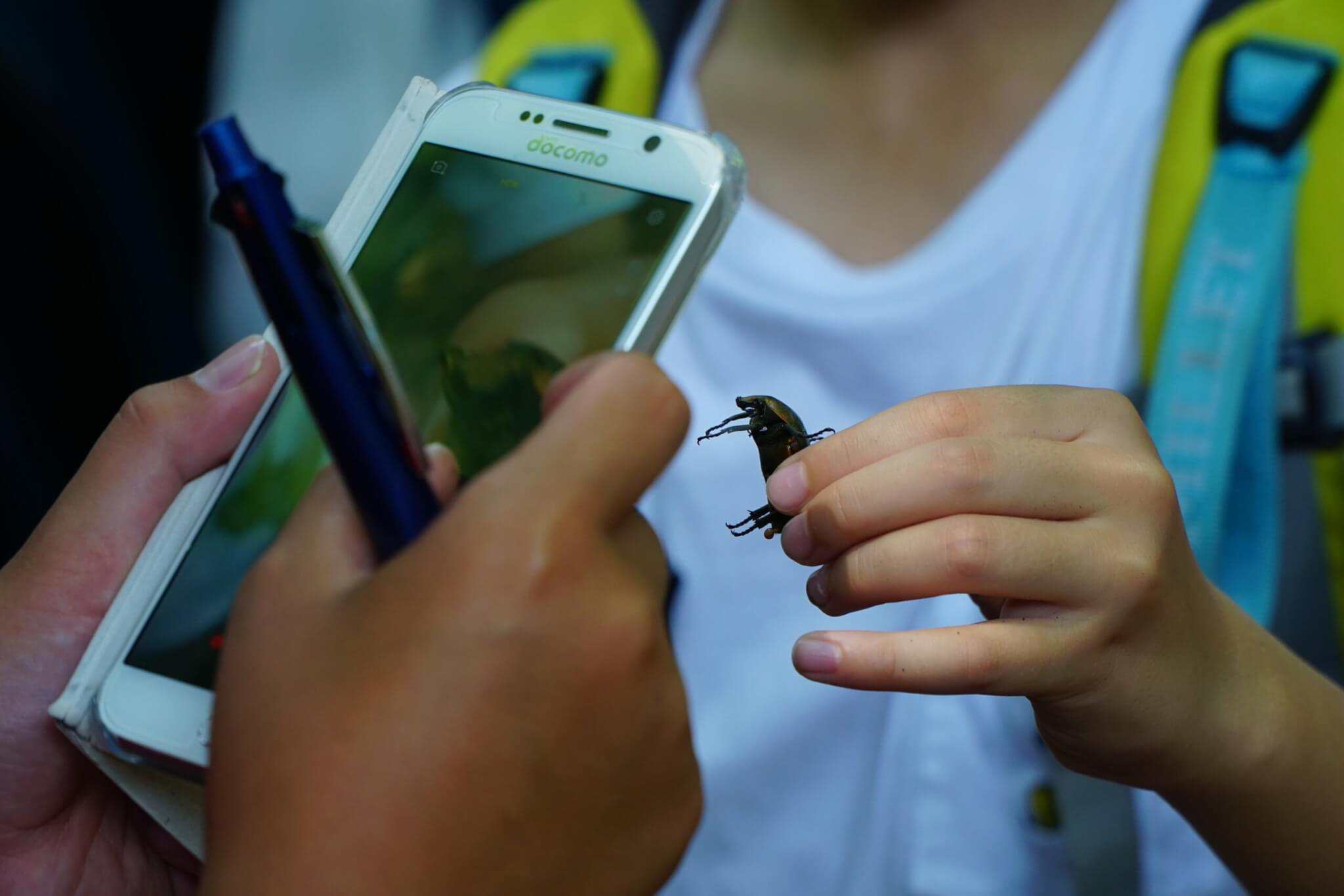 """""""昆虫一家""""の2代目に聞く ~世界的に生き物が豊かな大都市・東京の今~ #未来へつなげ2030"""