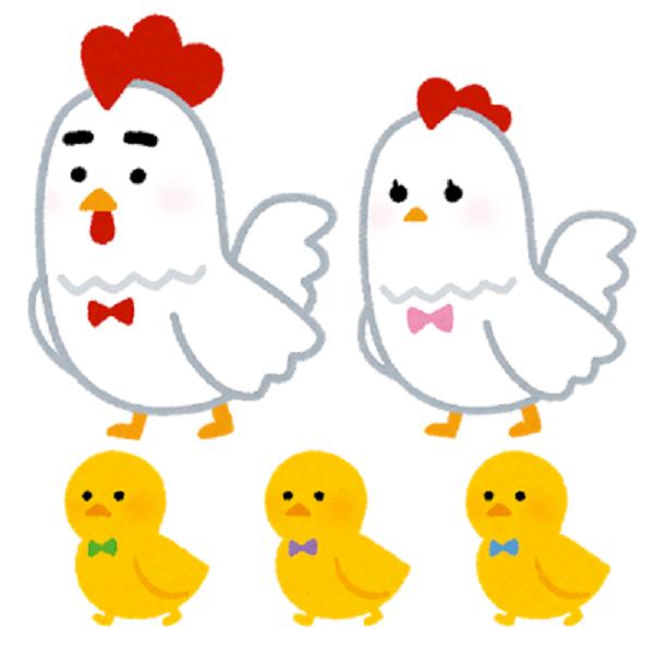 おうちで産地交流~までっこ鶏~美味しさの秘密