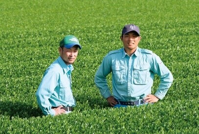 おうちde作り手に会おう! 『鹿児島知覧 有機栽培の産直緑茶』 ~失敗の連続が生んだ奇跡のお茶~