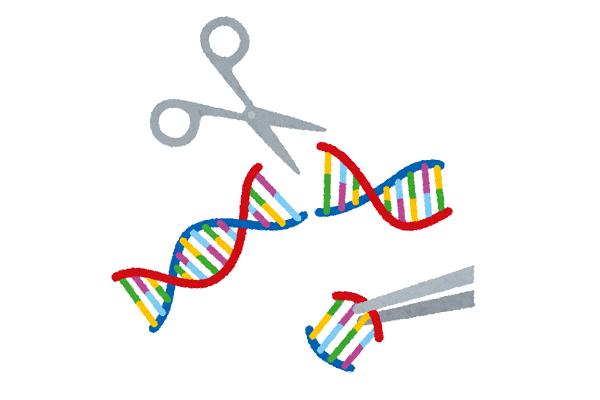ゲノム編集食品学習会