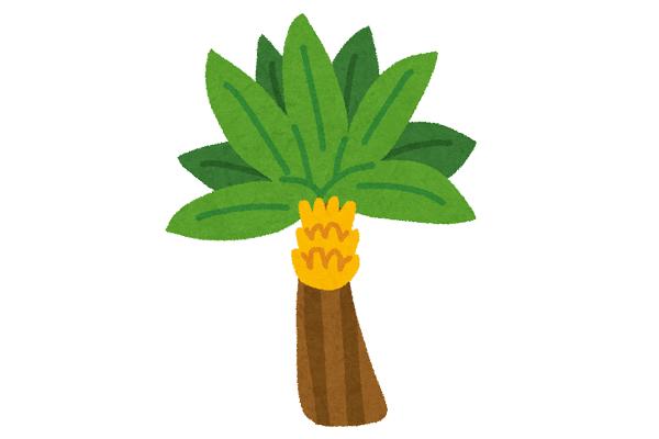 バナナ学習会~ほんもの実感~