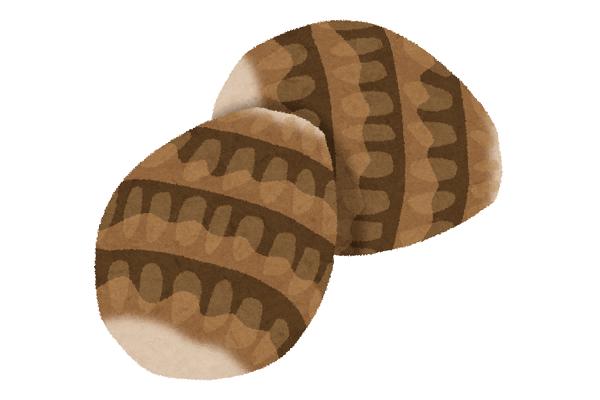 【3】11月14日午後 いなぎめぐみの里山で、サトイモの収穫体験をしませんか!